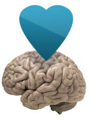 brein verleiden